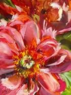 Floral Close Up