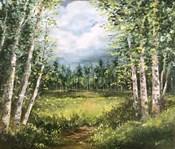 Colorado Meadow landscape