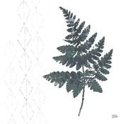 Nordic Fern II