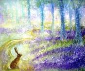 Follow The Magical Path
