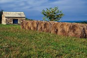 Large Round Haybales With Stone Barn