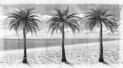 3 Island Palms