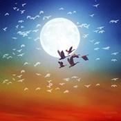 Birds Flying 1