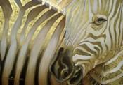 Zebra Codex