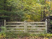 Gate And Country Path