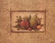 Classic Fruit II