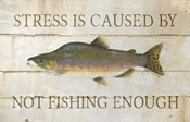 Stress and Fishing