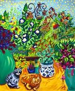 Los Gatos Garden