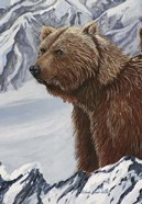 Grizzly Snowy Mountain