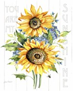 Sunshine Sunflowers A