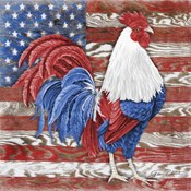 American Rooster B
