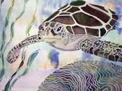 Sea Turtle Beginning