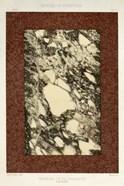 Marble Varieties V