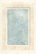 Marble Varieties IX
