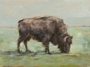 Where the Buffalo Roam I