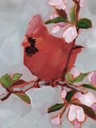 Painted Songbird IV