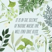 Natural Bliss I