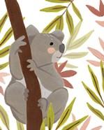 Koala-ty Time II