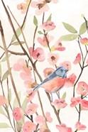 Cherry Blossom Perch I