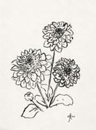 Floral Ink Study V