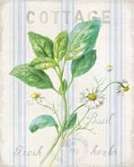 Floursack Herbs IV