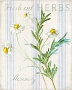 Floursack Herbs I