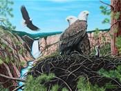 A Gathering of Eagles at Yellowstone Falls
