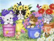 Cats in Flower Pot