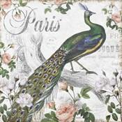 Paris Peacock
