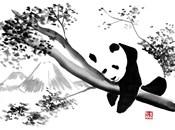 Panda In His Tree