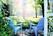 Garden XIII