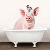 Pig in Bathtub