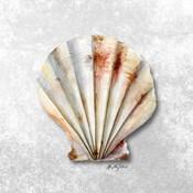 Shell Collector II