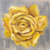 Yellow Roses II