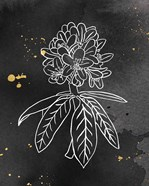 Indigo Blooms II Black