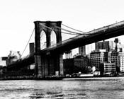 Bridge of Brooklyn BW II