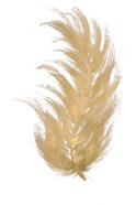 Gold Feather I