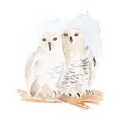 Watercolor Snowy Owls