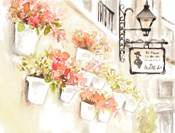 Paris Flowerpots