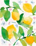 Garden Lemons