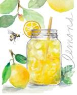Bee-Friend The Lemons and Lemonade