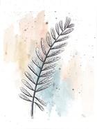 Soft Nature I