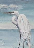 Great Egret Standing