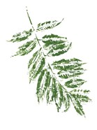 Tropical Leaf Stamp Branch