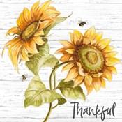 Harvest Gold Sunflower Bouquet