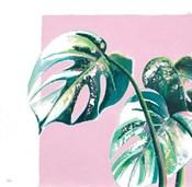 New Tropics II