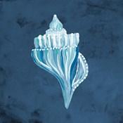 Azul Dotted Seashell on Navy I