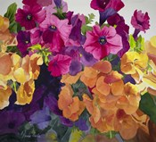 Petunias and Pansies