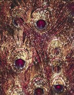 Golden Ruby Peacock Feathers