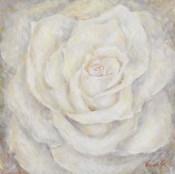 E-Motion Rose